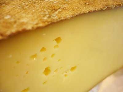 degustation fromages - vins blancs